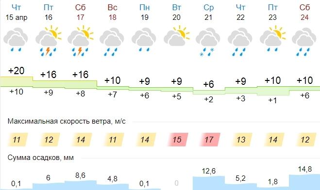 В Калугу на следующей неделе может вернуться снег