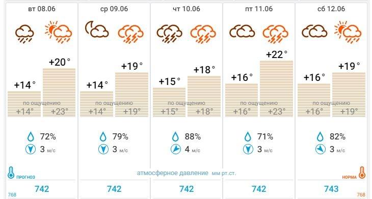 Всю неделю в Калуге будут идти ливни и греметь грозы