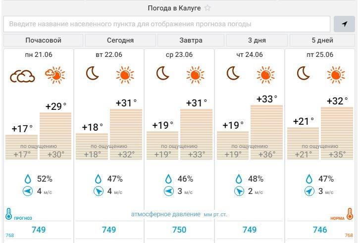 В Калугу пришла африканская жара